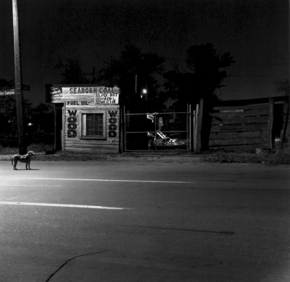 Night Scene, Elmwood, 1974