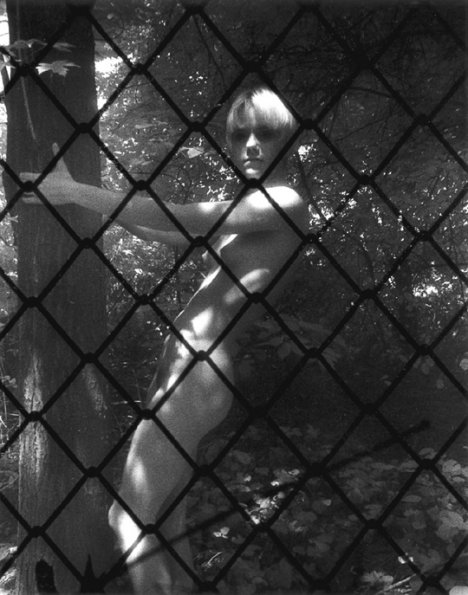 Nude Behind Fence         1991